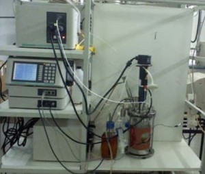 lab-biorreactor